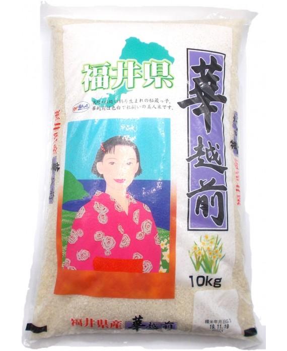 名古屋食糧 福井県産 華越前 - 10kg